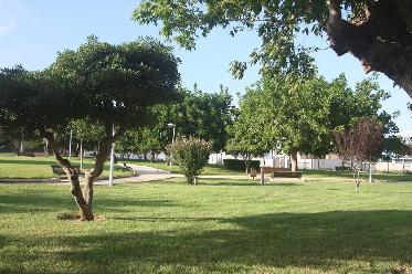 Millorar els parcs infantils i dotar l'Espai Participa, els projectes triats pels veïns en els Pressupostos Participatius