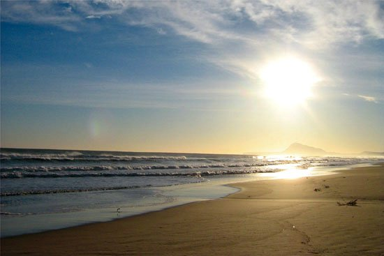 L'Ajuntament emplaça a ciutadans, tècnics i experts al debat sobre el model de la platja